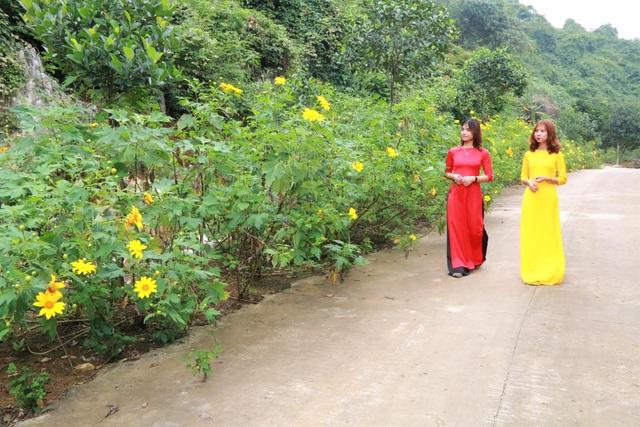 Loài hoa nổi tiếng Đà Lạt bung lụa ở Tràng An làm đắm say lòng du khách - 4