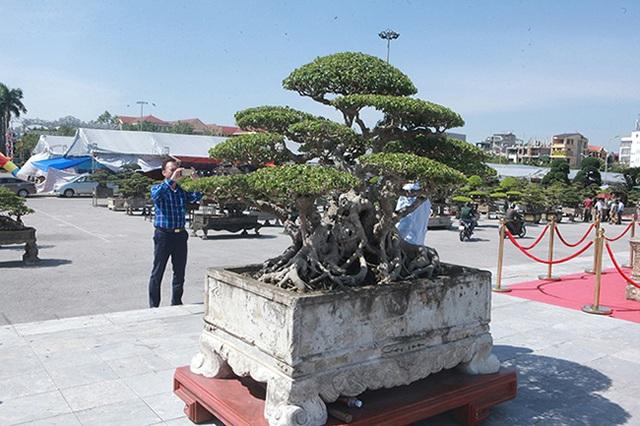 Sanh cổ của đại gia Bắc Ninh, 30 năm trước mua 7 triệu đồng, giờ lên 10 tỷ đồng - 13