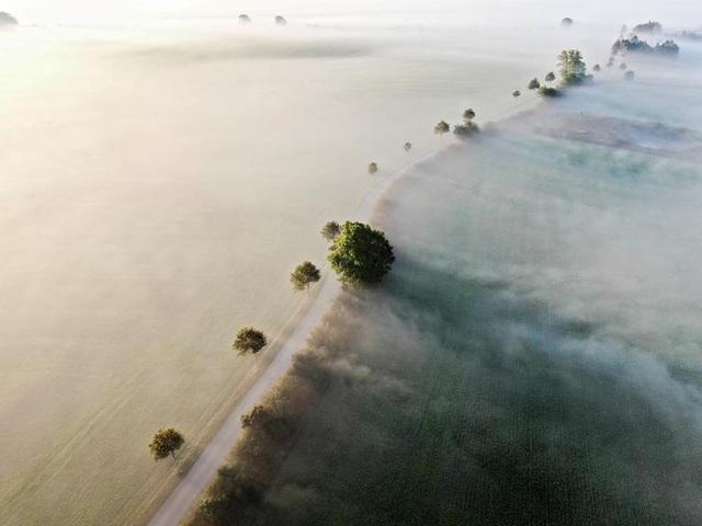 Thế giới từ trên cao: Năm 2020 đầy sóng gió  - 14