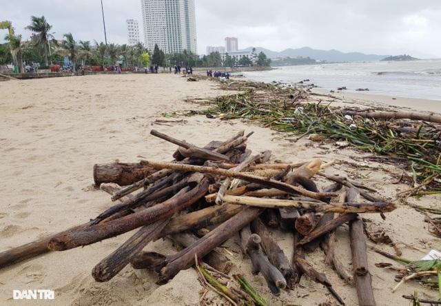 Bãi biển Nha Trang ngập ngụa rác sau mưa lũ - 2