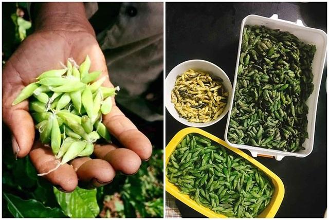 Loạt đặc sản nhìn thì sợ, ăn thì mê không phải ai cũng dám thử ở Việt Nam - 7