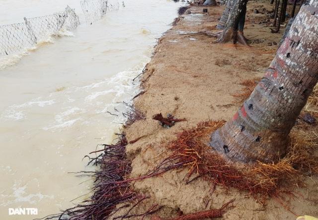 Văn bản lạ gây phẫn nộ tại TP Nha Trang: Biển nước làm lộ sự quan liêu! - 6