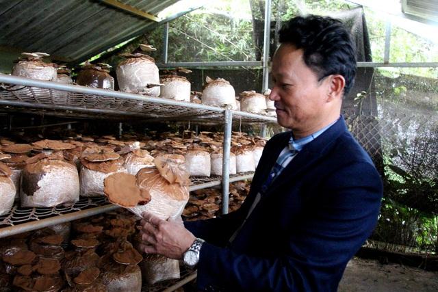 Gặp vua nấm, từng mang hàng đi khắp chợ chẳng ai thèm mua - 4