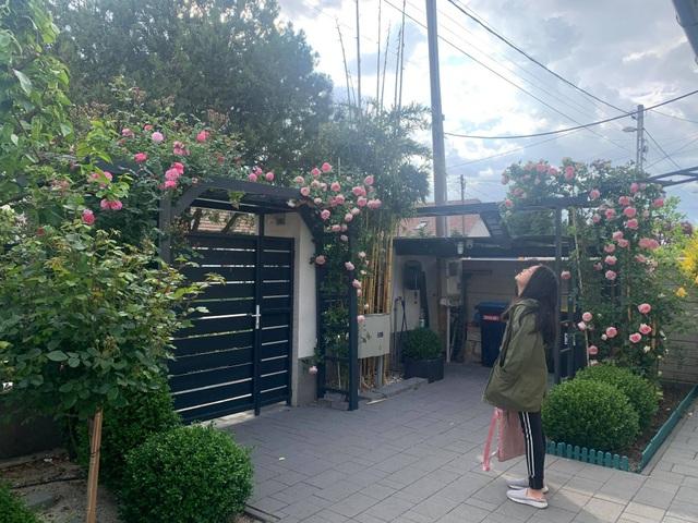 Choáng ngợp vườn hồng ngoại đẹp như cổ tích của vợ chồng Việt ở trời Tây - 10