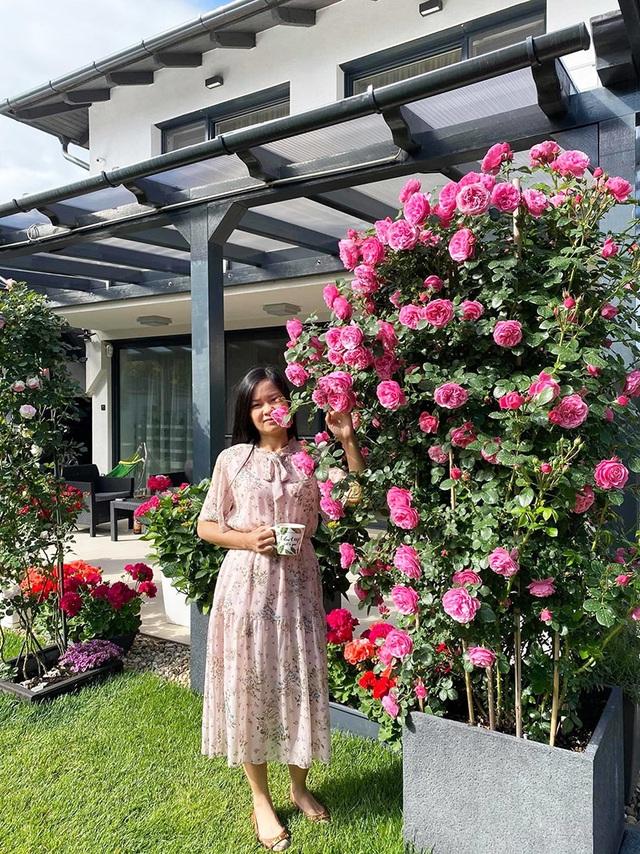 Choáng ngợp vườn hồng ngoại đẹp như cổ tích của vợ chồng Việt ở trời Tây - 11