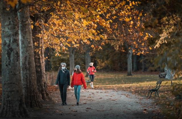 Choáng ngợp cảnh sắc đẹp như phim mùa cây thay lá ở Pháp - 4