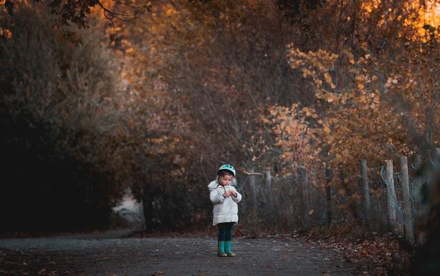 Choáng ngợp cảnh sắc đẹp như phim mùa cây thay lá ở Pháp - 6