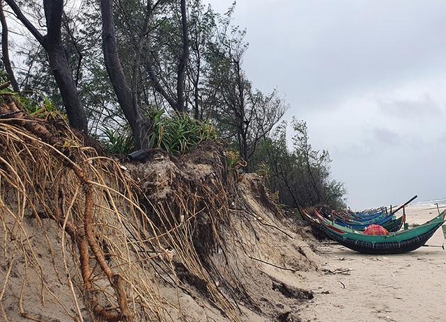 Quảng Bình: Biển gặm sát vào khu dân cư, người dân kêu cứu - 3