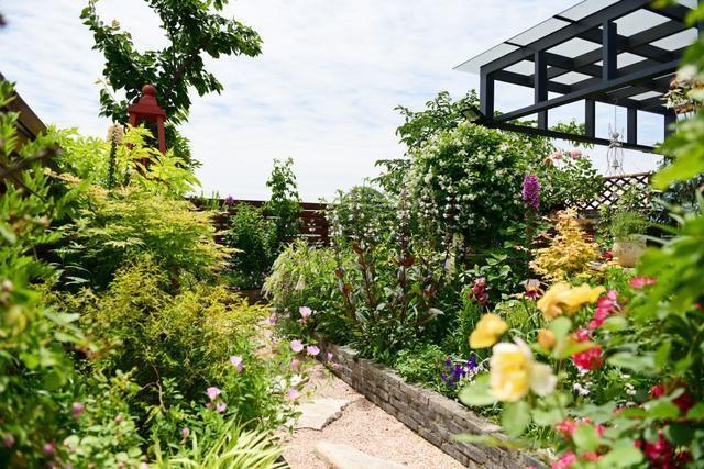 Vườn hoa sân thượng đẹp như thiên đường của vị giám đốc bận rộn - 3