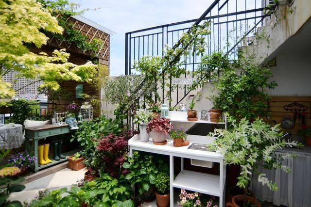 Vườn hoa sân thượng đẹp như thiên đường của vị giám đốc bận rộn - 7