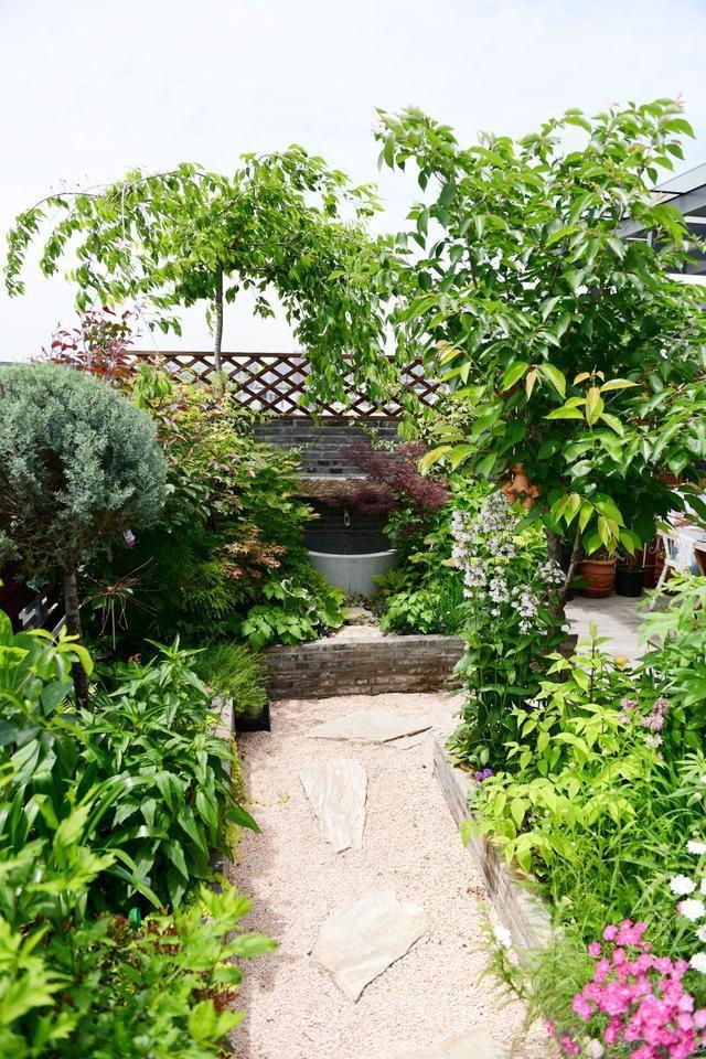 Vườn hoa sân thượng đẹp như thiên đường của vị giám đốc bận rộn - 8
