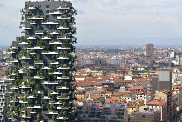 Độc đáo tòa chung cư như rừng giữa phố, mỗi buổi sáng chim hót líu lo - 5