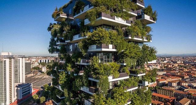 Độc đáo tòa chung cư như rừng giữa phố, mỗi buổi sáng chim hót líu lo - 6