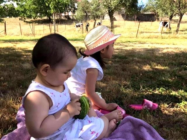 Trang trại trăm loại cây trái trĩu trịt quả của cặp vợ chồng Pháp - Việt - 14