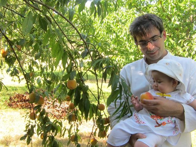 Trang trại trăm loại cây trái trĩu trịt quả của cặp vợ chồng Pháp - Việt - 15