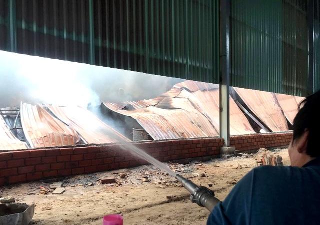 Hai công ty gỗ bị lửa thiêu rụi ở Bình Dương - 2