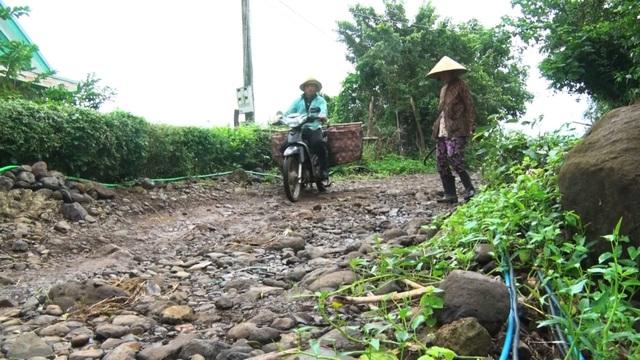 Phú Yên: Hàng ngàn hộ dân ngày đêm mơ có con đường dân sinh - 4