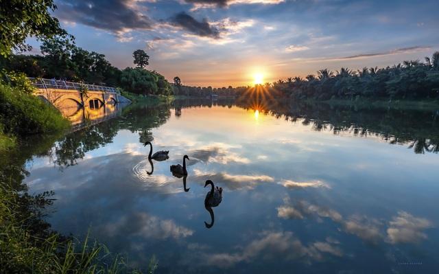 Ecopark được vinh danh khu đô thị tốt nhất châu Á - 2