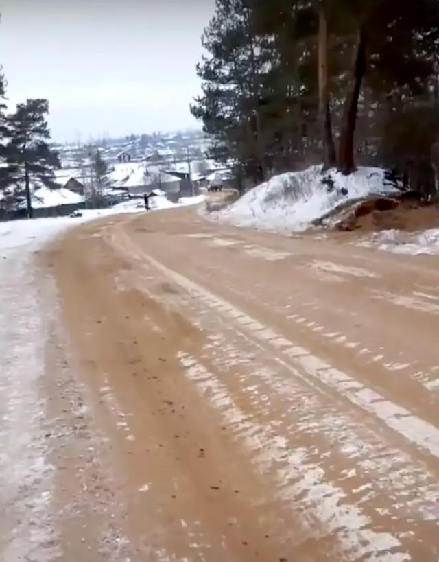 Phát hiện xương người nằm rải rác trên đường cao tốc ở Nga - 3
