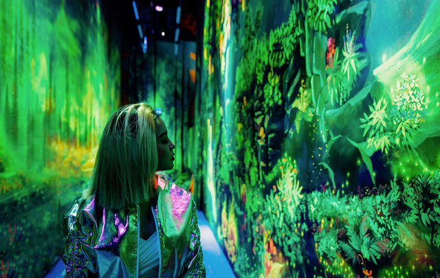 Vườn Ánh Sáng Lumiere: Kỳ quan ánh sáng giữa lòng Đà Lạt - 2