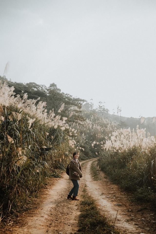 Lạc vào thiên đường cỏ lau đẹp như tranh ngay gần Hà Nội - 2