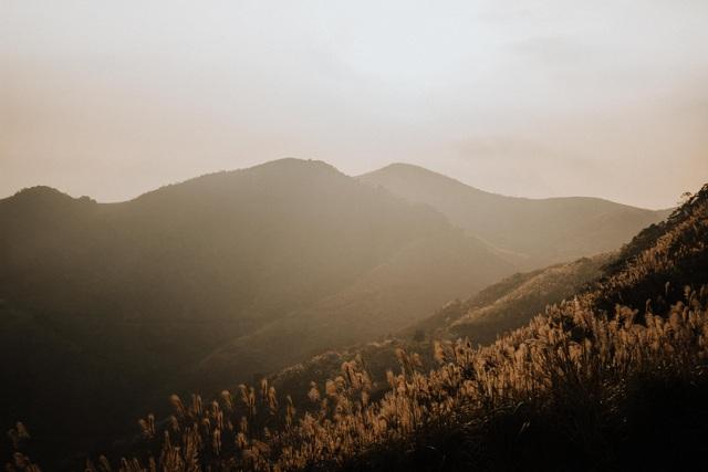 Lạc vào thiên đường cỏ lau đẹp như tranh ngay gần Hà Nội - 6