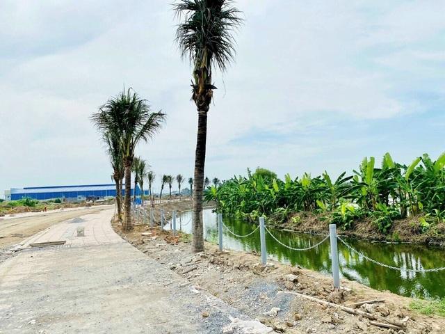 Người dân TPHCM săn nhà ngoại ô, sống xanh sau dịch - 4