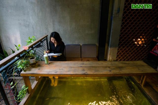 Uống cà phê ngắm cá Koi khủng độc đáo ở Hà Nội - 11