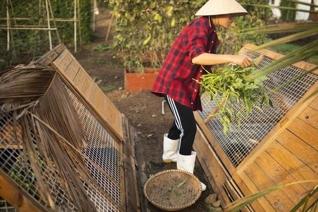 Nữ nhiếp ảnh Sài Gòn bỏ phố về quê, tự làm khu vườn 1ha thơ mộng - 5