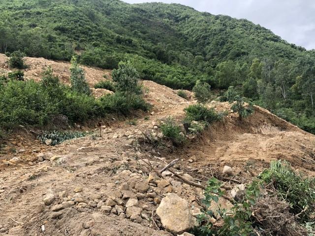 Vụ bạt núi Cô Tiên: Bắt 2 xe múc đào phá hàng trăm m2 đất rừng - 3
