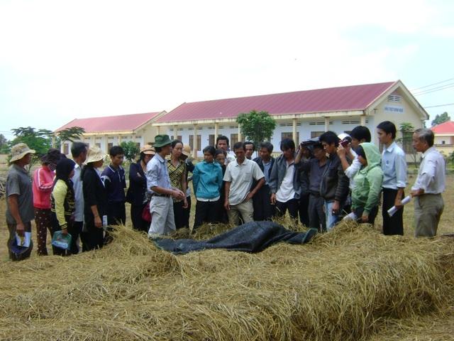 Nhiều thanh niên làm giàu sau khóa đào tạo nghề nông nghiệp - 1