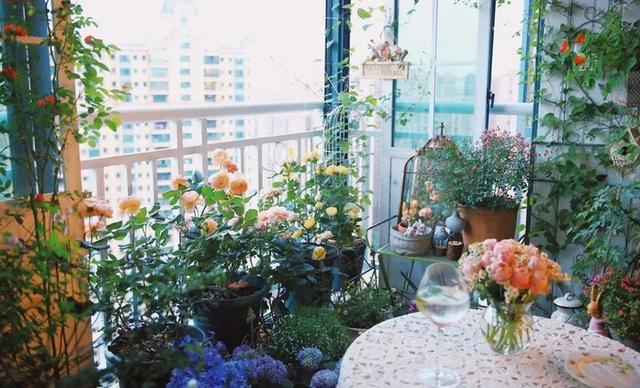 Cô gái xinh đẹp lột xác cho ban công 7m2 thành vườn nhỏ rực rỡ sắc màu - 6