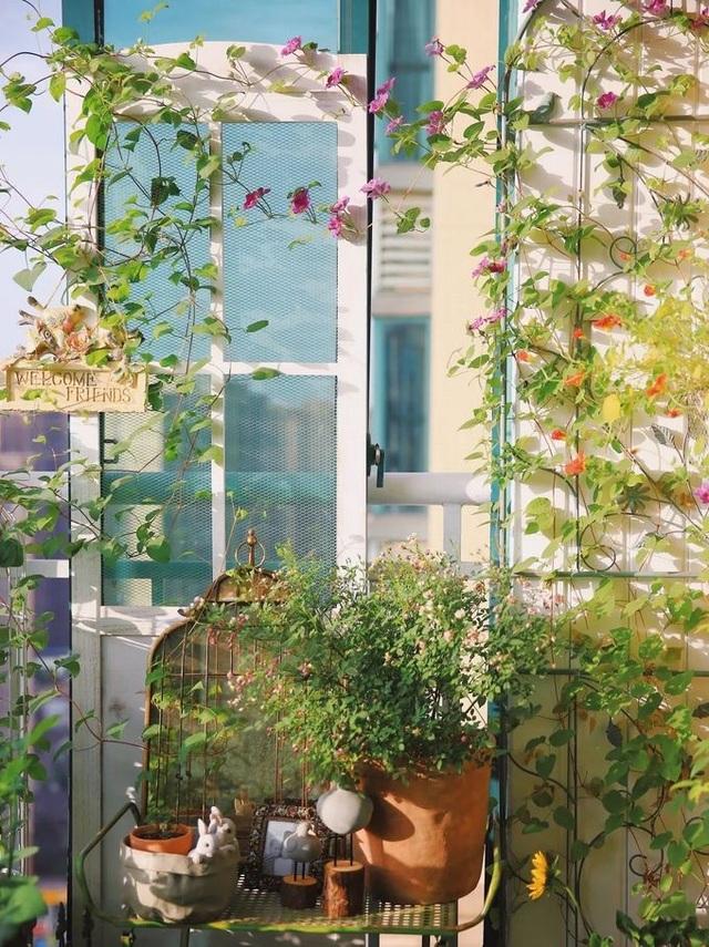 Cô gái xinh đẹp lột xác cho ban công 7m2 thành vườn nhỏ rực rỡ sắc màu - 7