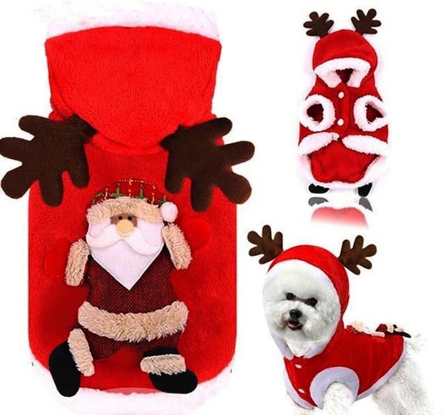 Chủ nhân đốt ví trưng diện đồ Noel hạng sang cho thú cưng - 2