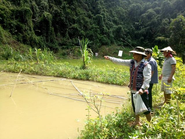 Quảng Nam: Nhiều gia đình trẻ ở miền núi xin được thoát nghèo - 2