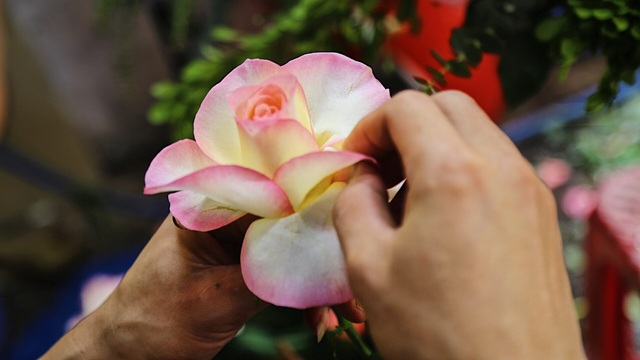 Vợ chồng khuyết tật mở tiệm hoa, thu về chục triệu đồng mỗi tháng - 6