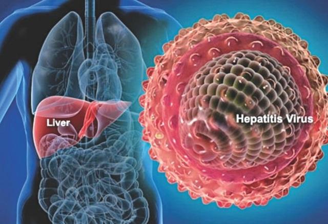 Cách phòng ngừa ung thư gan hiệu quả - 1
