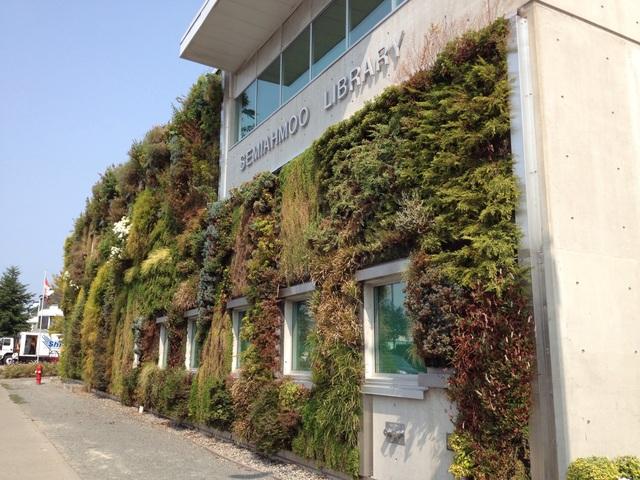 Độc đáo bức tường phủ hàng ngàn cây xanh, ai đi qua cũng ngoái nhìn - 4