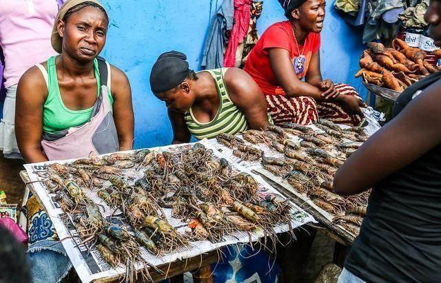 Khu chợ bán hải sản rẻ hơn rau, con gì cũng có kích thước khủng - 2