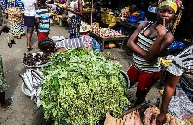 Khu chợ bán hải sản rẻ hơn rau, con gì cũng có kích thước khủng - 6