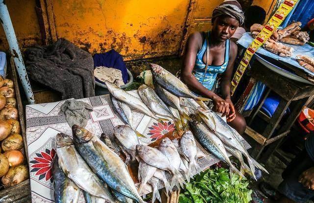 Khu chợ bán hải sản rẻ hơn rau, con gì cũng có kích thước khủng - 7