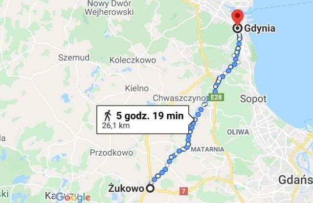Chú chó mù tìm về với chủ sau hành trình 5 ngày 30 km - 2