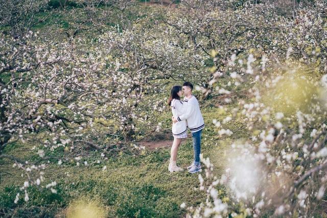 Đẹp quên lối mùa hoa mận nở trắng trời cao nguyên Mộc Châu - 5