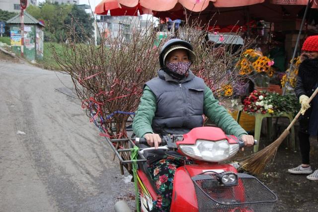 Đào Nhật Tân xuống phố sớm, người Hà Nội thích thú mua đào đón... Noel - 2