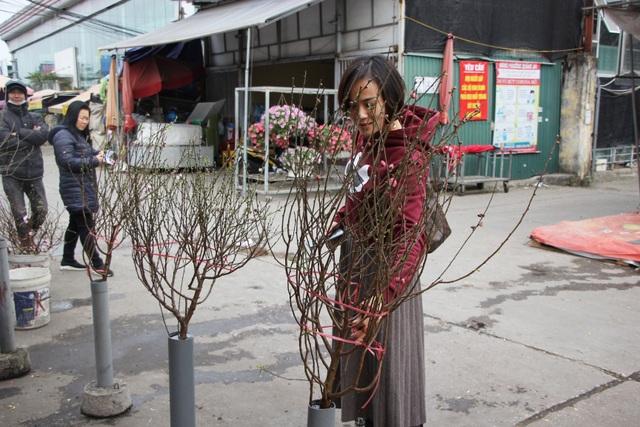 Đào Nhật Tân xuống phố sớm, người Hà Nội thích thú mua đào đón... Noel - 9