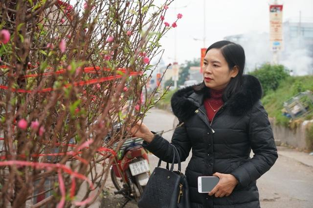 Đào Nhật Tân xuống phố sớm, người Hà Nội thích thú mua đào đón... Noel - 7