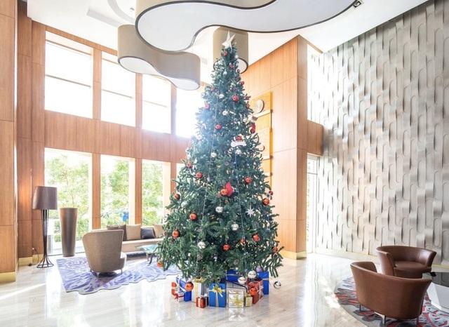 Mùa Giáng sinh an lành và những thông điệp cuộc sống - 2