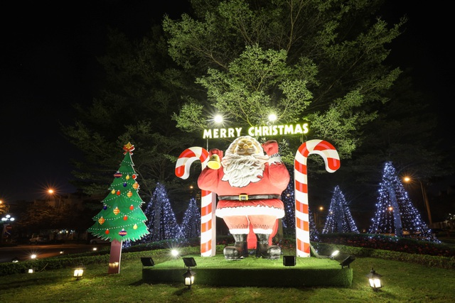 Mùa Giáng sinh an lành và những thông điệp cuộc sống - 3
