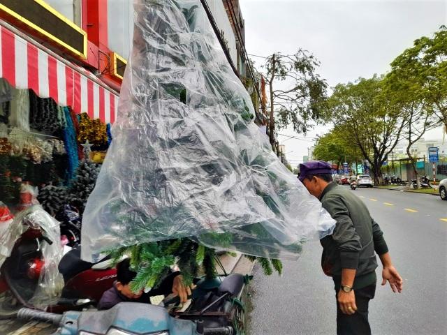 Thị trường Noel tại Đà Nẵng: Cây thông đắt hàng - 6