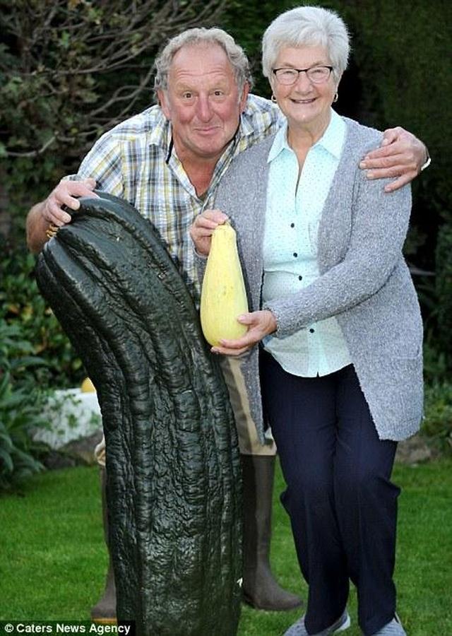 Choáng ngợp khu vườn siêu khổng lồ, rau bắp cải cũng nặng đến... 45kg - 3
